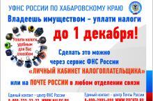 Управление федеральной налоговой службы по Хабаровскому краю